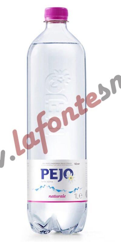 Acqua Pejo Naturale 1 litro PET (12 bottiglie)